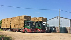 Modern & Working Lorries