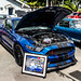 Mustang Madness. 2018-05-20 by Less Than Amateur Photography
