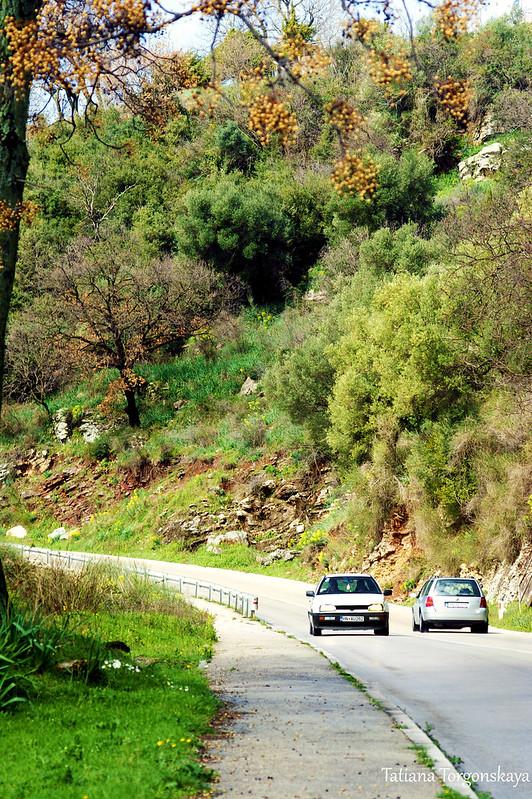 Машины на черногорской загородной дороге