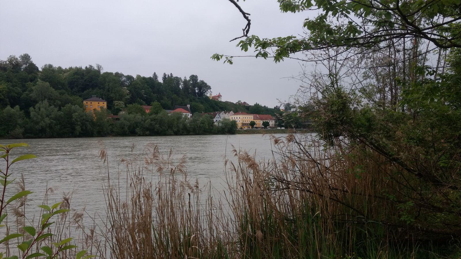 Joggen und Wandern in den Innauen von Bad Füssing: Obernberg und Inn