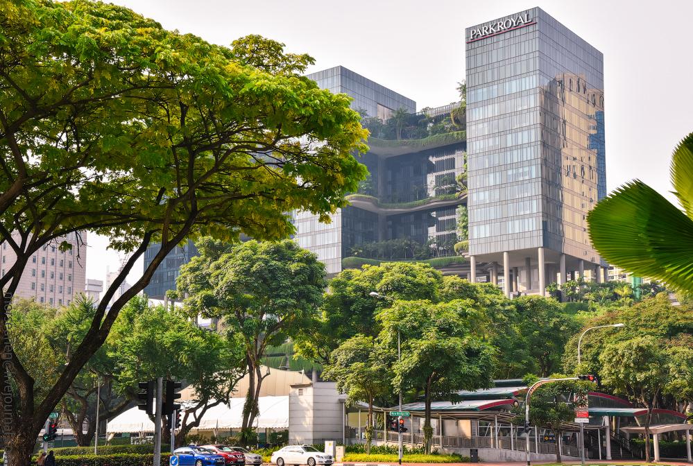 singapore-dubai-(51)