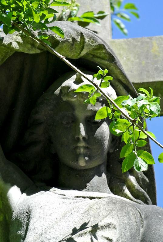Abney Park Cemetery_2018-3