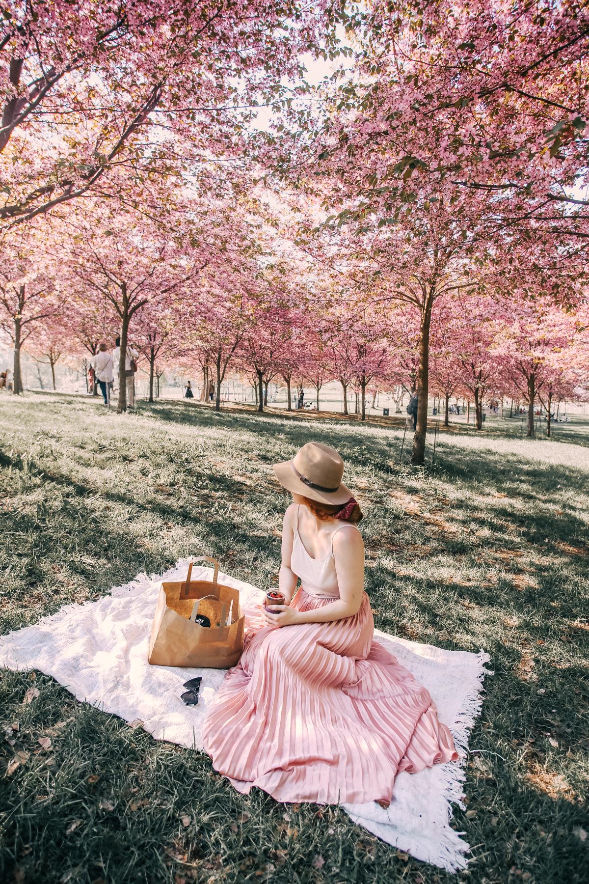 roihuvuori kirsikkapuisto annieveliina-13