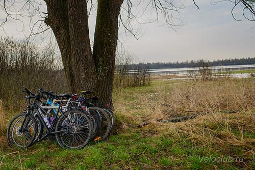 Стоянка на берегу Ладьинского пруда
