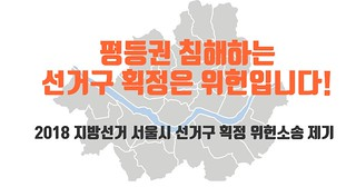선거구획정위헌소송
