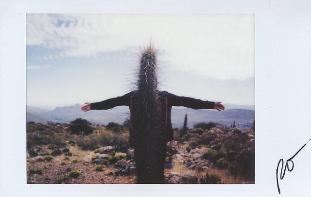 Fujitivas_XX Am a man, am a Cactus