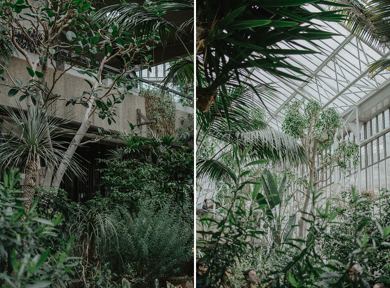 the barbican conservatory 3