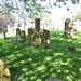 Irvine Old Parish Churchyard (264)