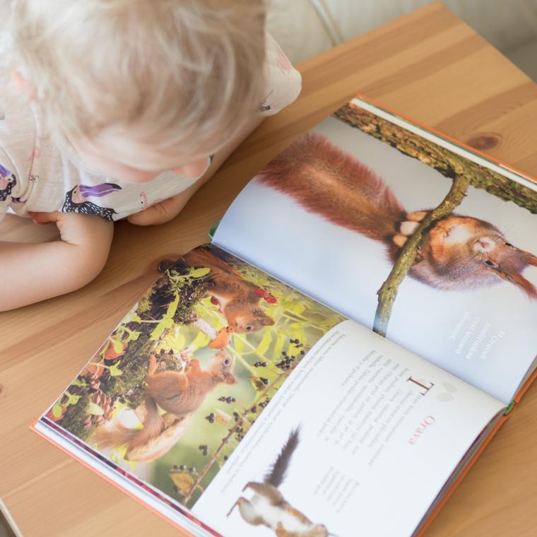 Lapsen oma eläinkirja 3