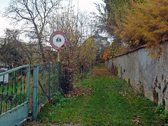 Giromagny, sentier du Rioz