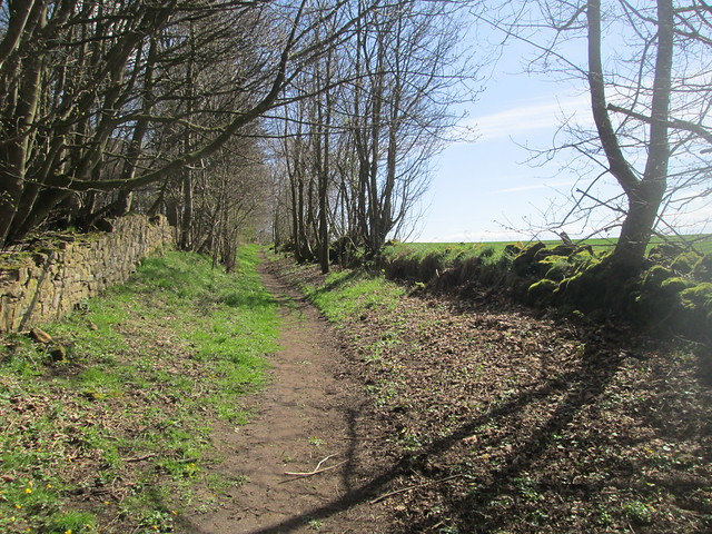 Braes Loan path
