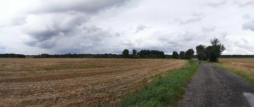 20100830 102 0110 Jakobus Weg Feld Wald Wiese_P01