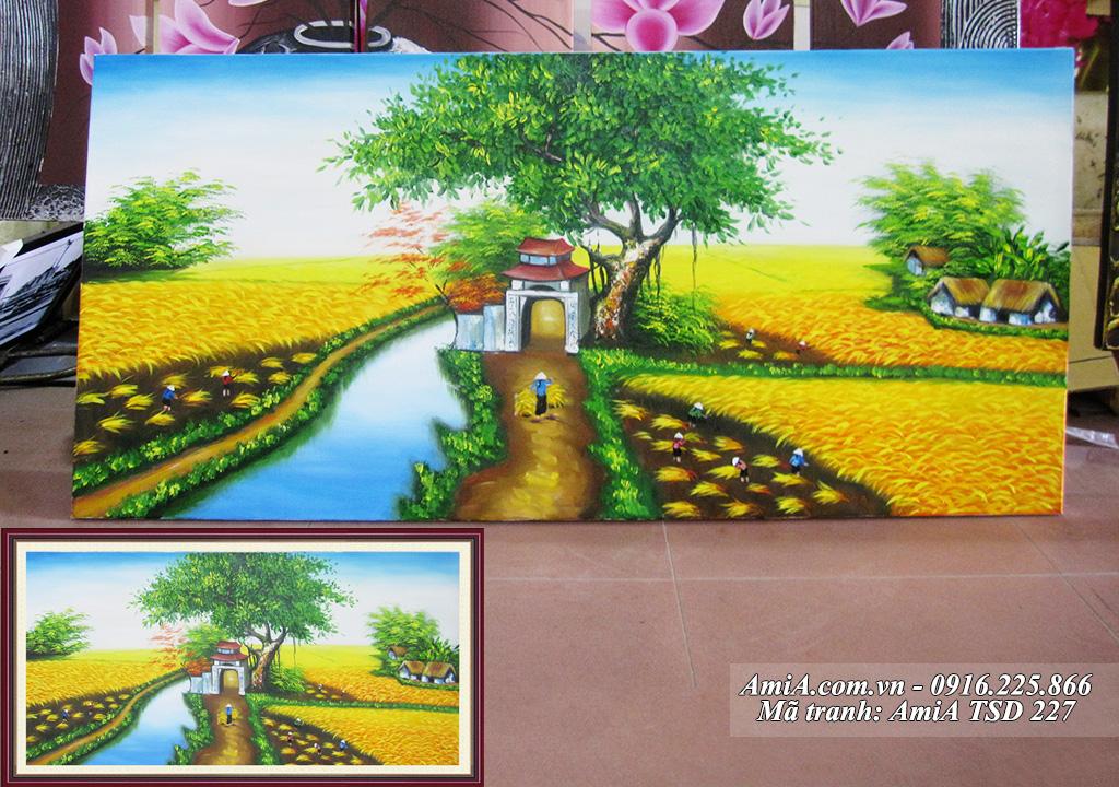 Tranh sơn dầu phong cảnh làng quê em cánh đồng lúa vàng