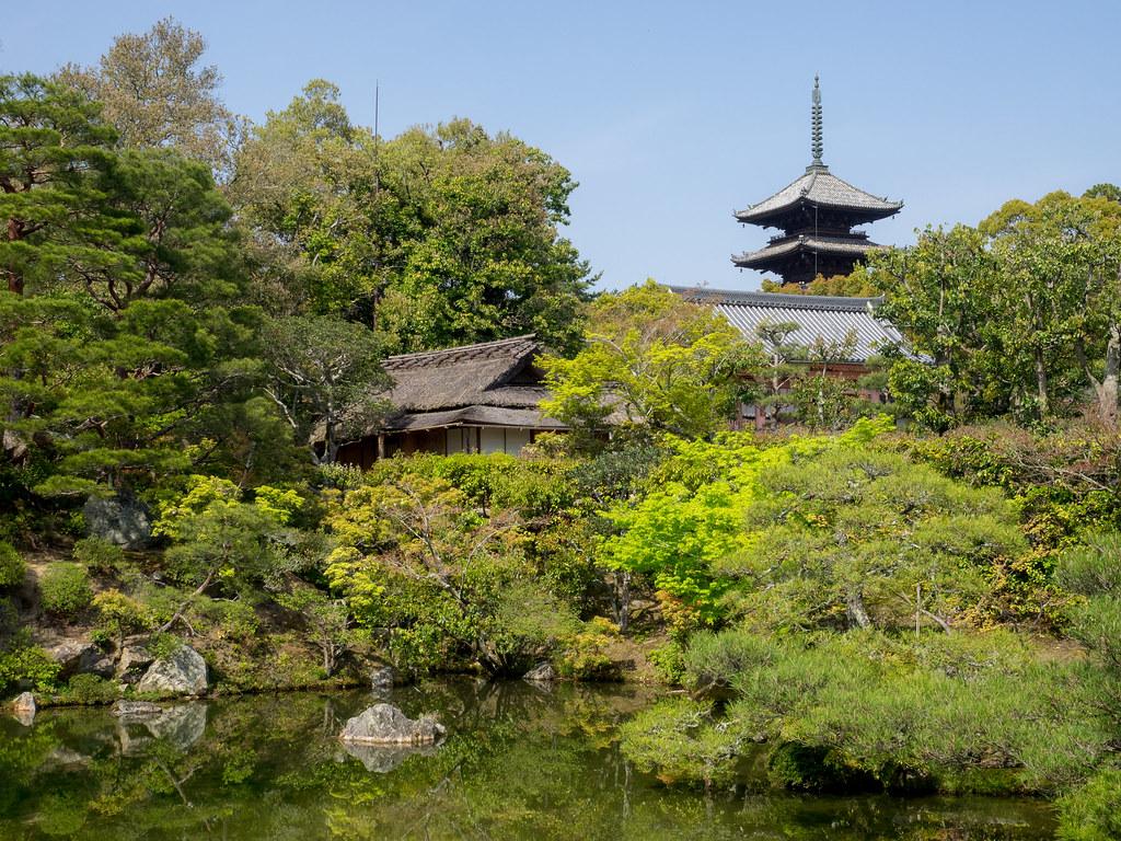 Pond at Ninnaji Temple - Kyoto