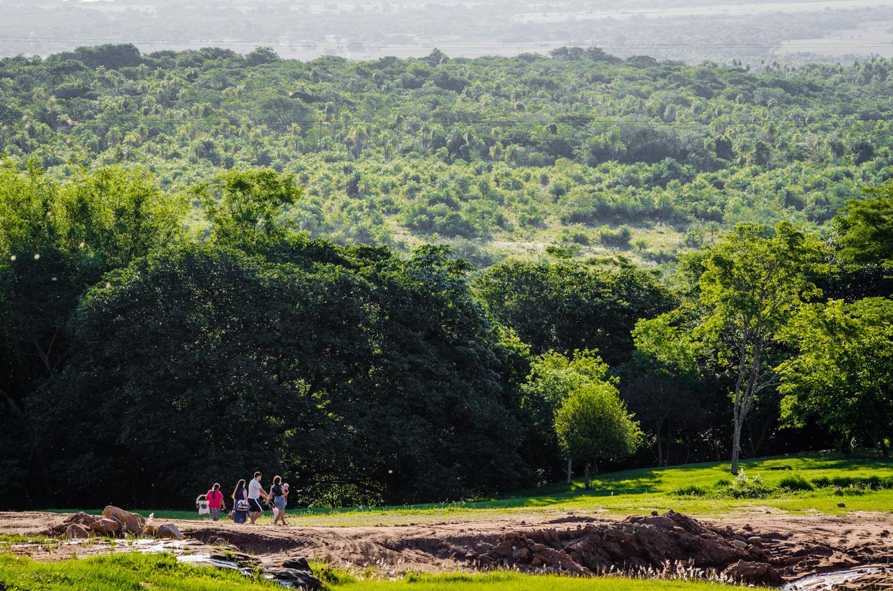 """Una familia camina para buscar un lugar de camping en la propiedad ecológica """"El Escondido"""" durante la mañana de un domingo de Enero. (Elton Núñez)."""