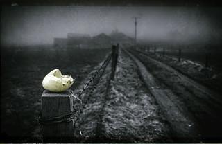 """""""The farm"""".."""