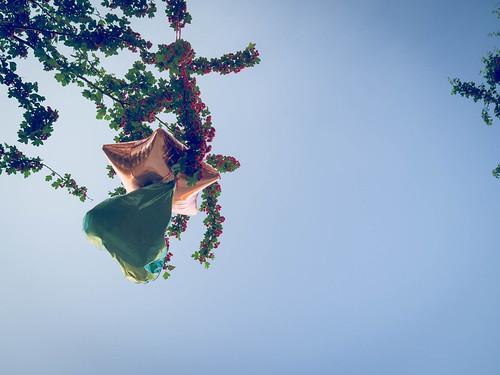 132 Ballons im Baum