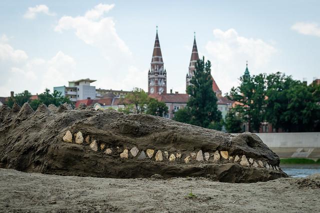 Krokodil Szegeden
