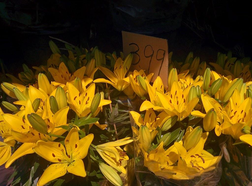 Flowers @ $C 3.99 #toronto #dovercourtvillage #flowers #dovercourtroad #hallamstreet #latergram #77foodmarket
