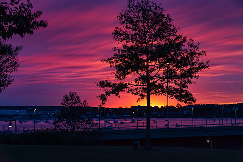 portland sunrise harborviewmemorialpark maine clouds autumn longexposure tree light color rpg90901 silhouette dawn canon 6d canonef70200mmf28lisiiusm canon70200f28lll filter neutraldensity lee bigstopper nd10 nd 2016 september 0623