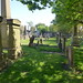 Irvine Old Parish Churchyard (213)