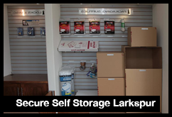 Secure Larkspur Storage