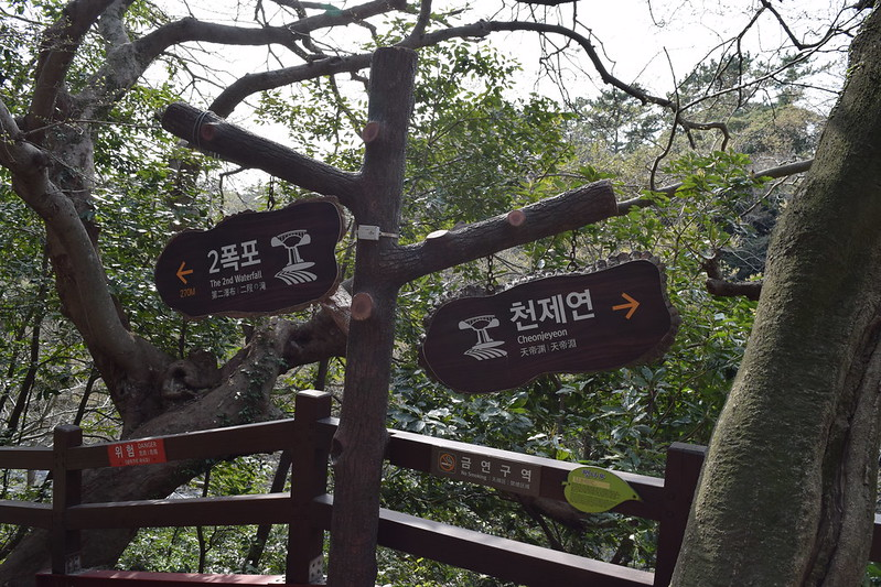 Cheonjeyeon Waterfalls (2)