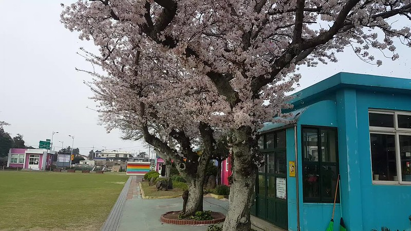 Deoreok School (1)