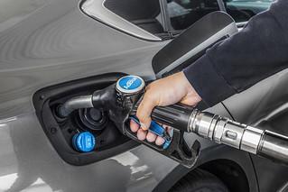 Opel Insignia führt Euro 6d-TEMP-Offensive an