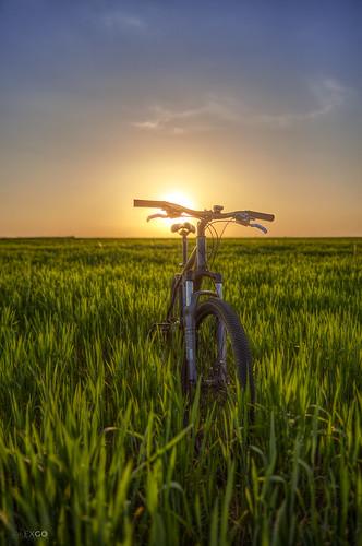 hdr bike dusk sun green