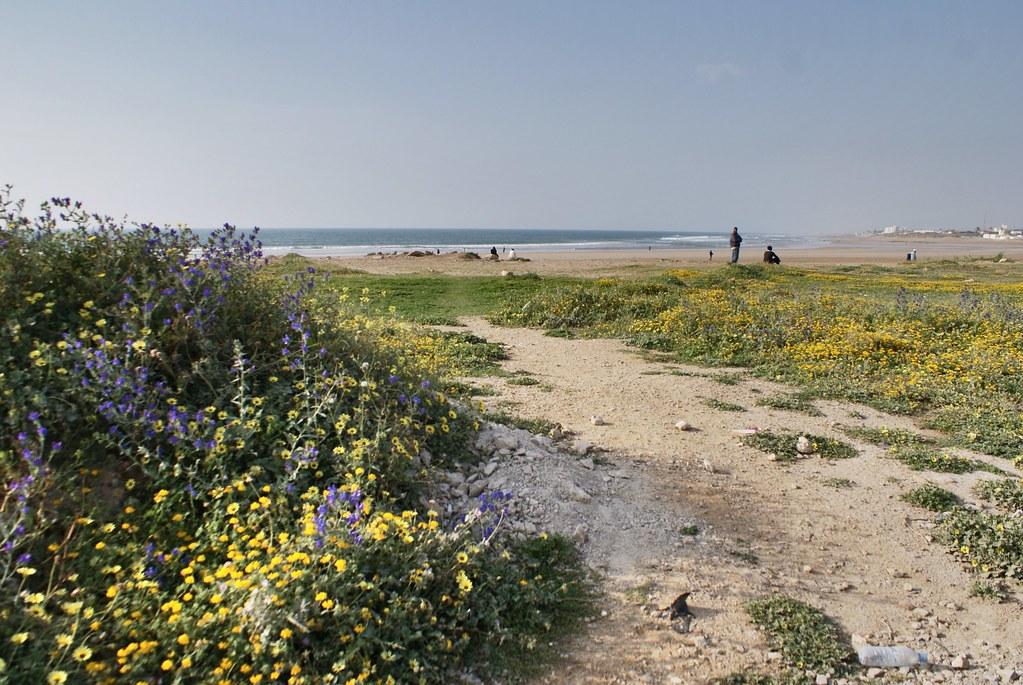 L'entrée sur la plage d'Asilah ville (pas sur la petite plage de la médina).