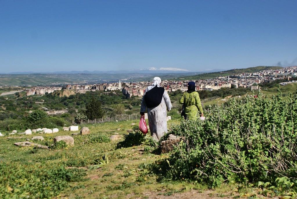 Vue sur la médina de Fès et sur les montagnes du moyen Atlas depuis les collines du nord.