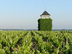 Tour du château Coufran - Photo of Saint-Christoly-Médoc
