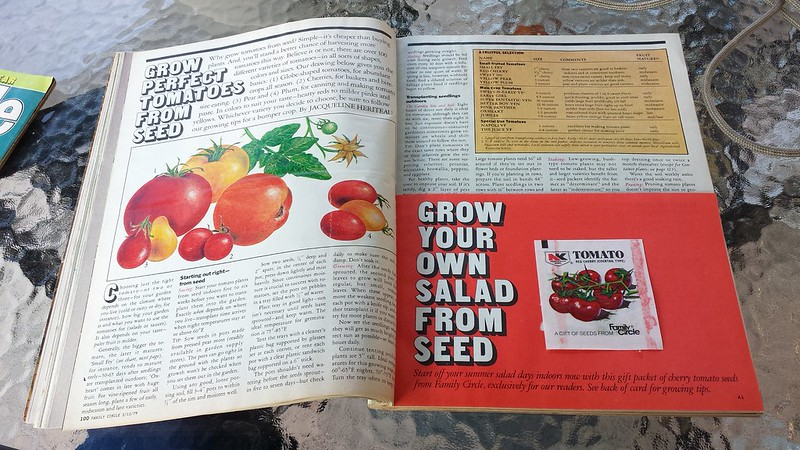 1979 Family Circle Tomato article