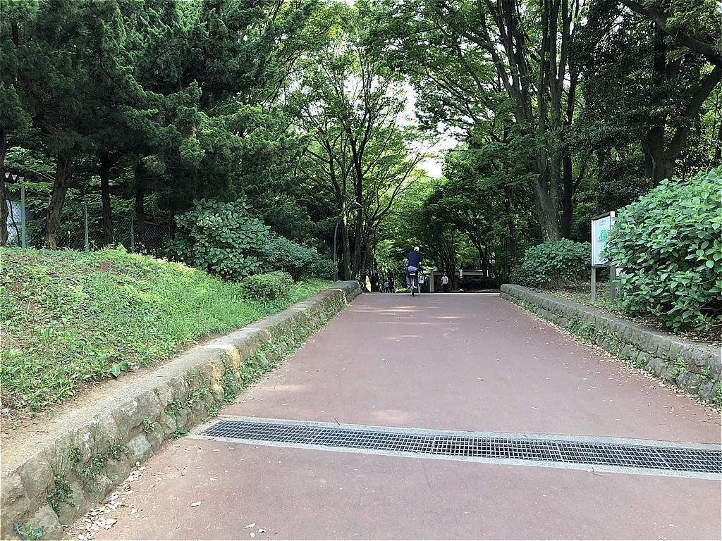 20180501_光ヶ丘 (1)