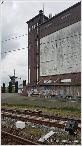 2018-04-28 Nieuw-Amsterdam - 1