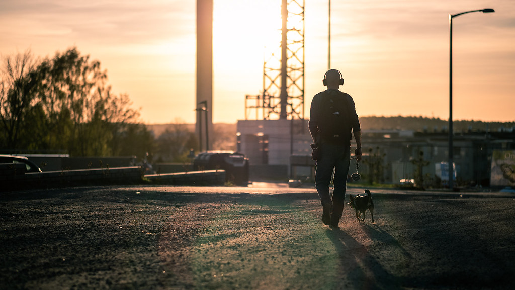 Walking the dog, Turku, Finland picture