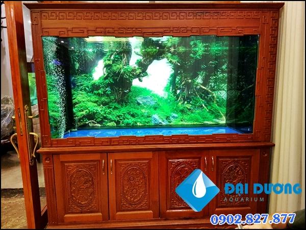 Hồ cá rồng khủng 6 bộ