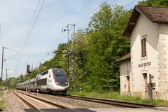 Forêt de Chaux | FR-39 (Jura, Bourgogne-Franche-Comté) | 12.05.2018 | SNCF-TGV 4418 as TGV 9269 Paris Gare de Lyon - Lausanne