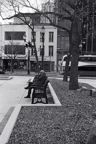 Alone in the city: Man in Gore Park Hamilton