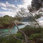 22. Veebruar 2018 - 14:29 - Ruta senderista entre Cala Galdana y la Macarella en Menorca. *** Hiking route between Cala Galdana and Macarella in Menorca.  MIS ALBUMNES  OTRA FORMA DE VER MI GALERIA. Mira todas mis fotos y amplia la que quieras  MIS FOTOS MÁS POPULARES SEGÚN VUESTRO CRITERIO.  Puedes seguirme en 500px.com/pabloarias  Y ahora también en FACEBOOK   Instagram  GOOGLE PLUS     Mis blogs: Un valle llamado Madrid                   y Fracciones de segundo  PORTFOTOLIO