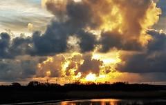 Golden Sunset Over Cresswell Ponds