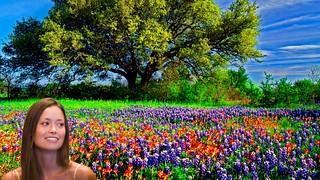 Summer Glau Spring flowers