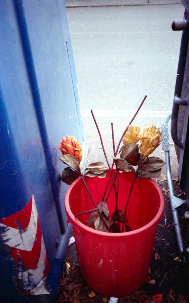 Mettete dei fiori nei vostri secchioni