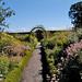 Scottish walled Garden