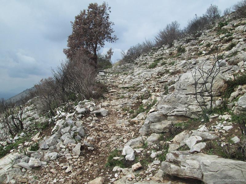 trail romano(1)