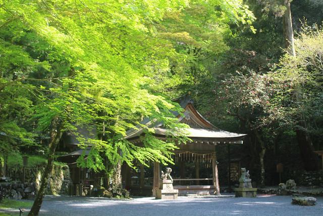 kifune-oku020