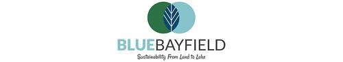 BlueBayfieldHeader-1