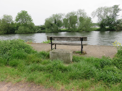 Thames Path - Windsor to Maidenhead