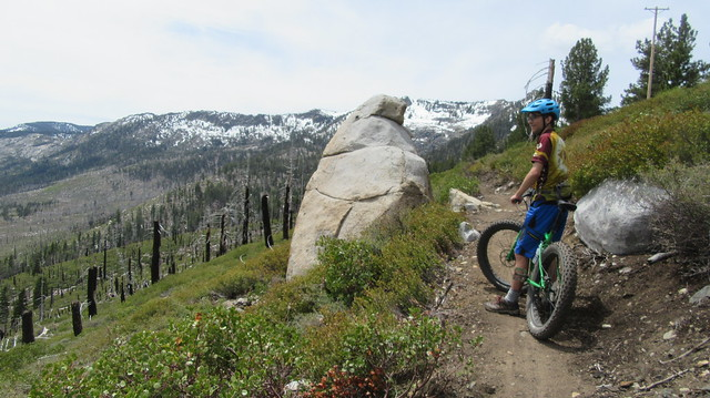 Angora Ridge Trails